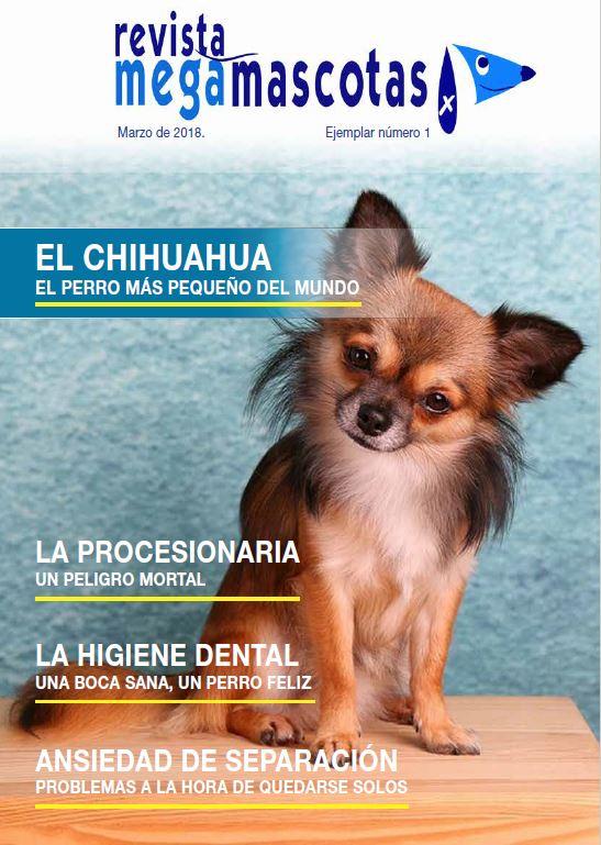 Primer número de la revista Megamascotas